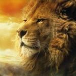 Usuario de las Cronicas de Narnia en Español: SaraLaTolerante